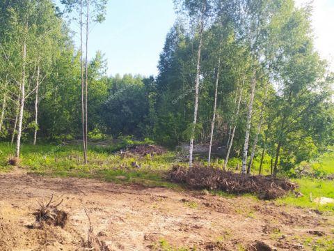 derevnya-lipovki-balahninskiy-municipalnyy-okrug фото