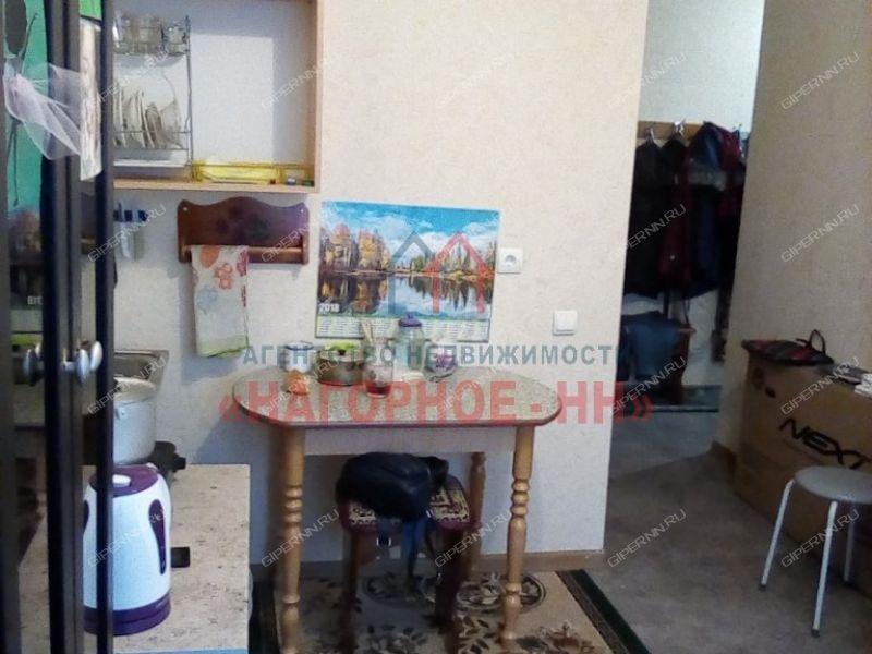 однокомнатная квартира на Васильковой улице дом 161а к1 город Нижний Новгород