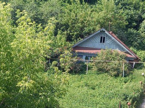 dom-sl-podnove-d-383 фото