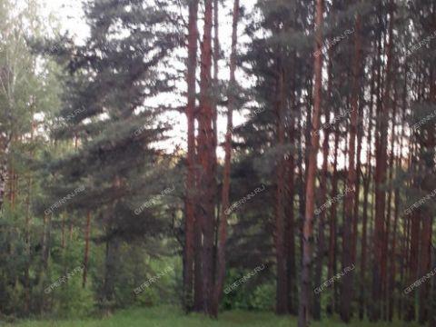 derevnya-babasovo-pavlovskiy-municipalnyy-okrug фото