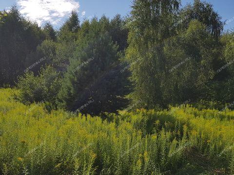 derevnya-kolobovo-gorodskoy-okrug-bor фото