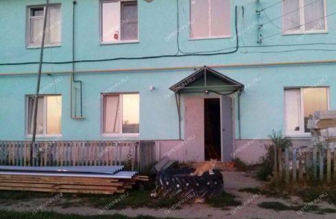 3-komnatnaya-selo-rumyancevo-dalnekonstantinovskiy-rayon фото